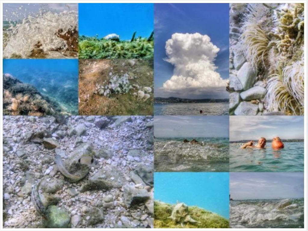 collage-onderwater-klein.jpg